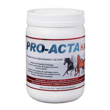 Picture of PRO - ACTA HA EQUINE RECOVERY FORMULA - 1kg