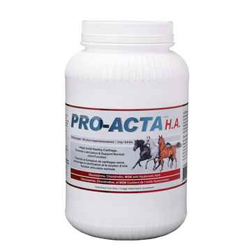 Picture of PRO - ACTA HA EQUINE RECOVERY FORMULA - 3kg