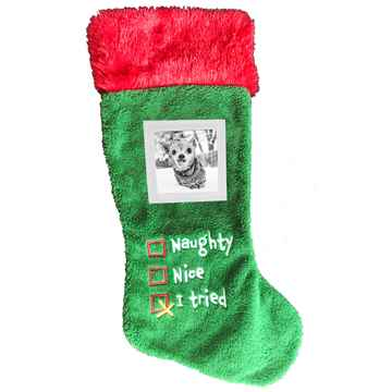 """Picture of XMAS HOLIDAY PICTURE FRAME STOCKING """"I TRIED"""" - 18in"""