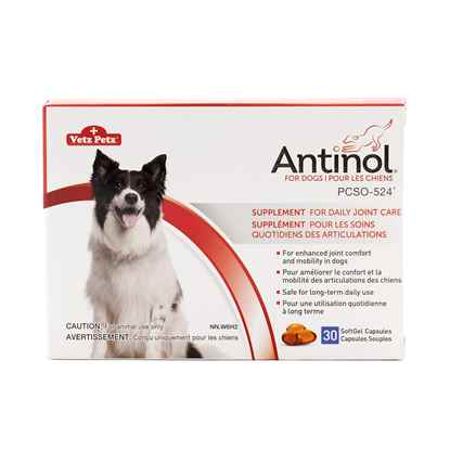 Picture of ANTINOL for DOGS - 30s