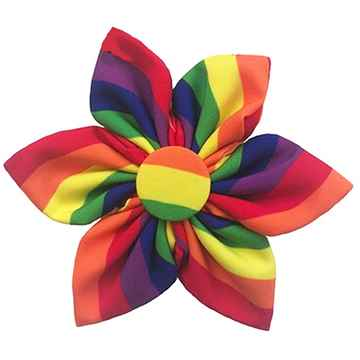 Picture of CANINE PINWHEEL NECK WEAR Pride - Small