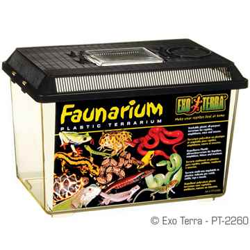 Picture of EXO TERRA FAUNARIUM (PT2260) - 12inx7.5inx8in