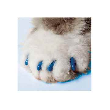 Picture of SOFT PAWS TAKE HOME KIT FELINE MEDIUM - Blue
