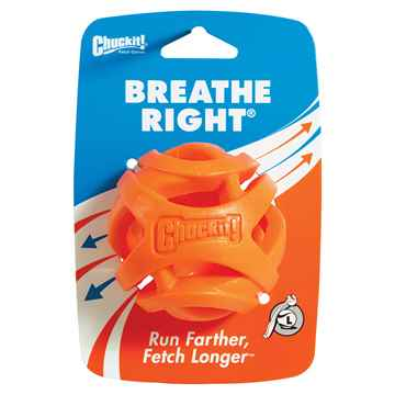 Picture of TOY DOG CHUCKIT Breath Right Fetch Ball Large - 1/pk