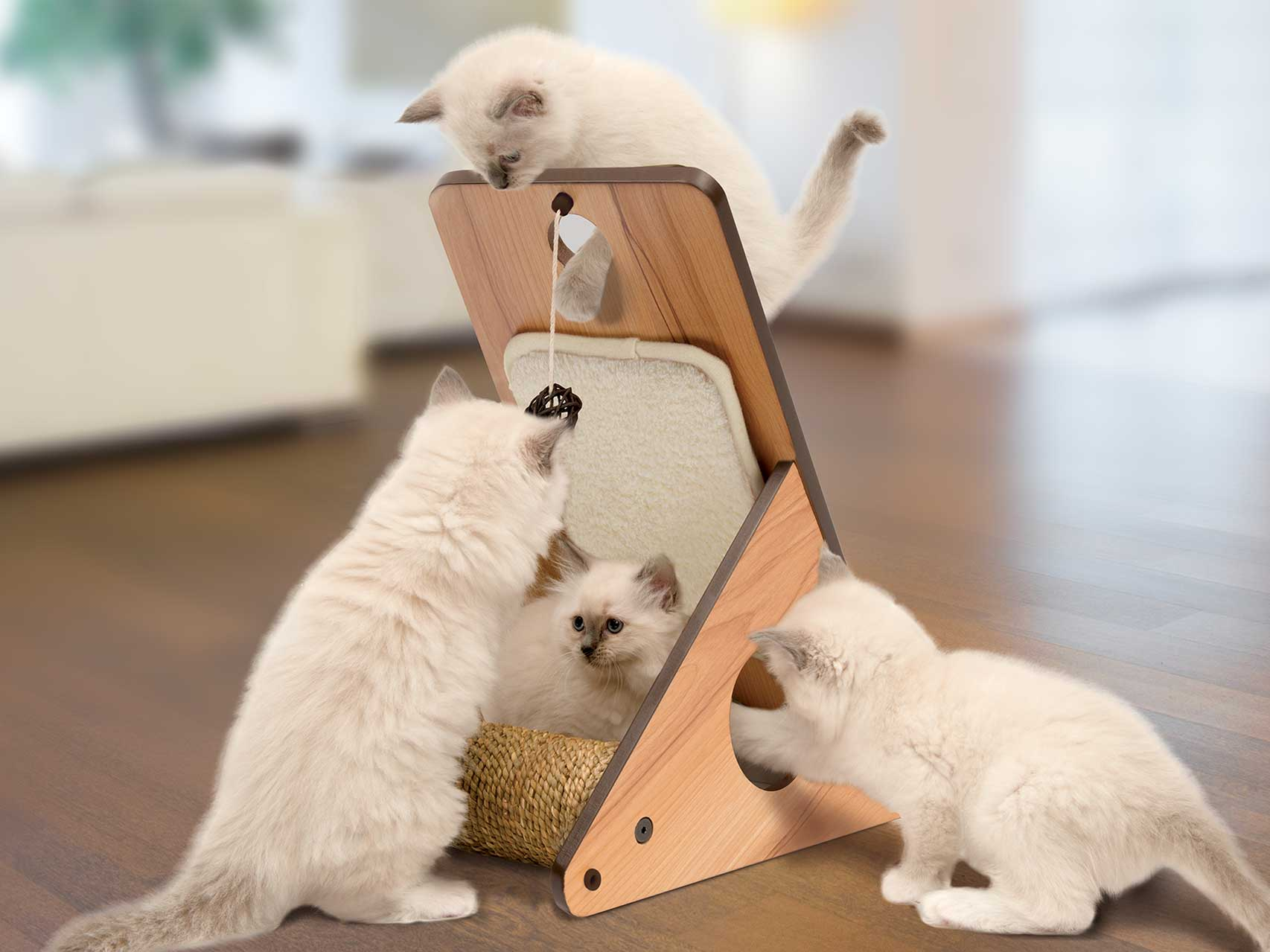 Picture for category Cat Furniture