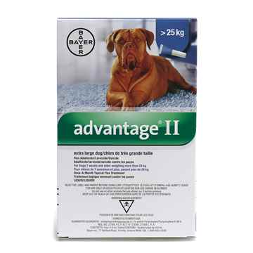 Picture of ADVANTAGE II BLUE 4 x 4ml DOGS OVER 25KG EXTRA LARGE DOG (su10)