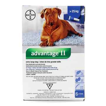Picture of ADVANTAGE II BLUE 6 X 4.0ML OVER 25KG EXTRA LARGE DOG (su10)