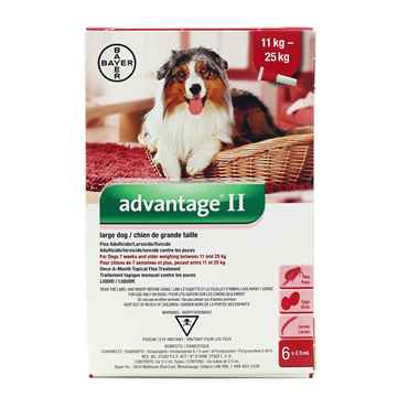 Picture of ADVANTAGE II RED 6 x 2.5ml DOGS 11kg - 25kg  (su10)