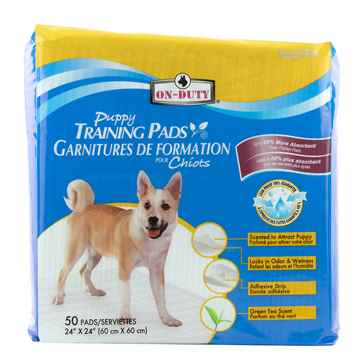 Picture of TRAINING PADS ON DUTY PUPPY PADS 24in x 24in - 50/bag