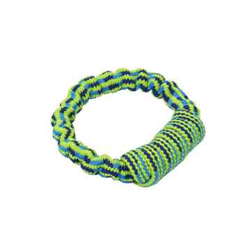 Picture of TOY DOG BUSTER Bungee Rope Handle Blue/Green