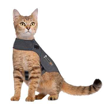 Picture of CLOTHING FELINE THUNDERSHIRT(chest 17-24in  13lbs+)Grey - Large