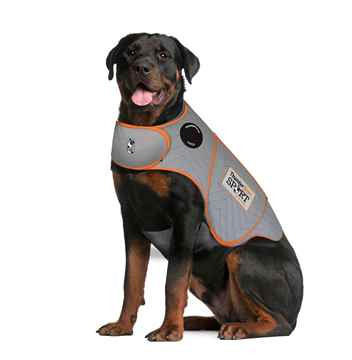 Picture of CLOTHING K/9 Thundershirt Sport (chest 37-50in weight 110lbs+)Platinum - XX Large