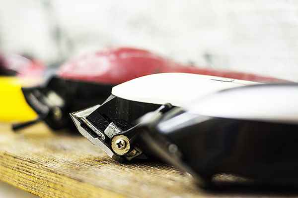 Picture for category Clippers and Trimmers