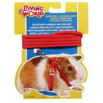Picture of GUINEA PIG HARNESS & LEAD SET Living World (60840) - Red