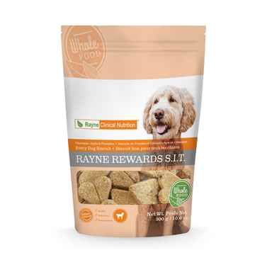 Picture of CANINE RAYNE APPLE & PUMPKIN TREAT - 300gm