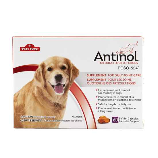Picture of ANTINOL for DOGS - 60s