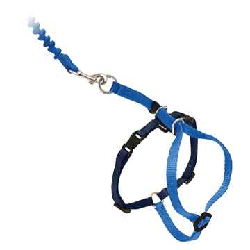 Picture of LEAD AND HARNESS COMBO PETSAFE Small Cat- Royal Blue