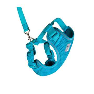 Picture of LEAD AND HARNESS COMBO RC ADVENTURE KITTY Large - Teal