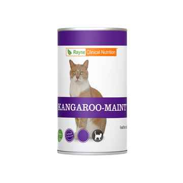 Picture of FELINE RAYNE KANGAROO MAINTENANCE - 12 x 354gm(tu)