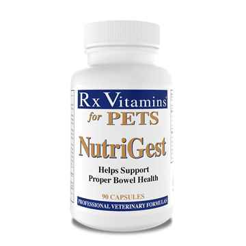 Picture of RX VITAMINS NUTRIGEST CAPS - 90's