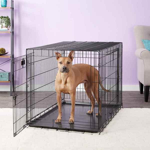 Picture for category Dog Crates / Kennels