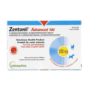 Picture of ZENTONIL ADVANCED CHEWABLE TABS 100mg - 30's