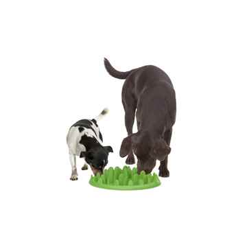 Picture of CANINE GREEN INTERACTIVE Slow Feeder - Small