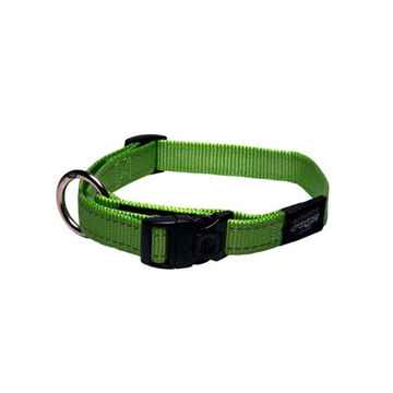 Picture of COLLAR ROGZ UTILITY NITELIFE Lime Green - 3/8in x 8-13in(tu)