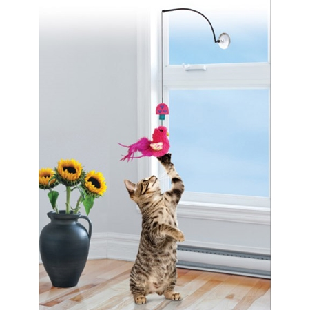 Picture of TOY CAT KONG ACTIVE Window Teaser Assorted Colors (CAT45)
