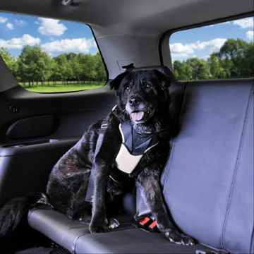 Picture of AUTO HARNESS Bergan for Dogs 50-80lbs - Large