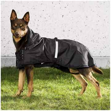 Picture of BACK ON TRACK DOG RAIN RUG with FILLING 67cm