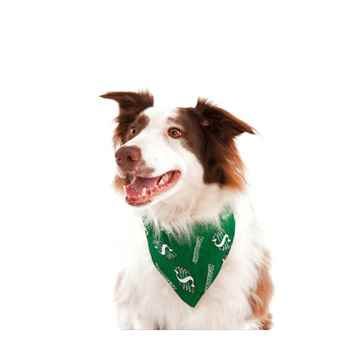 Picture of BANDANA CFL GEAR Saskatchewan Roughriders logo - Large