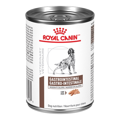 Picture of CANINE RC GI (GASTRO) MODERATE CALORIE - 12 x 385gm cans