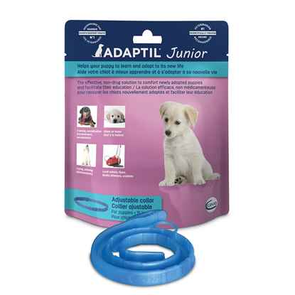 Picture of ADAPTIL COLLAR JUNIOR 37.5cm