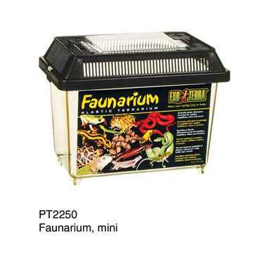 Picture of EXO TERRA FAUNARIUM (PT2250) - 7inx4inx5in