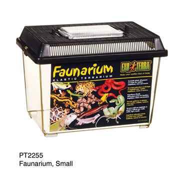Picture of EXO TERRA FAUNARIUM (PT2255) - 9inx6inx6.5in