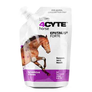Picture of 4CYTE HORSE EPIITALIS FORTE GEL - 250 ml