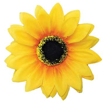 Picture of CANINE SUNFLOWER NECK WEAR YELLOW - Medium/Large
