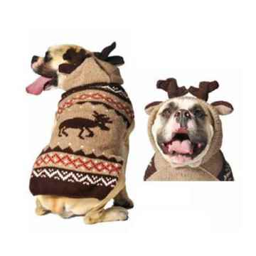 Picture of SWEATER CANINE Chilly Dog - Moose Hoodie with Antlers