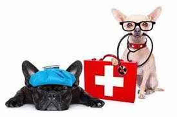 Picture for category First Aid Kits and Supplies