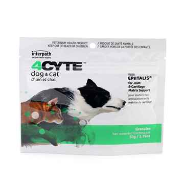 Picture of 4CYTE CANINE/FELINE (50-100gm)