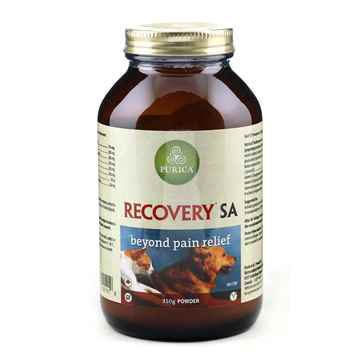 Picture of RECOVERY NUTRACEUTICAL CANINE/FELINE POWDER