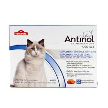 Picture of ANTINOL for CATS and DOGS