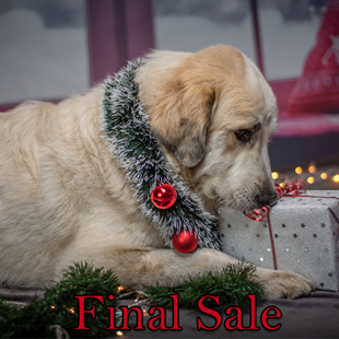 Picture for category Christmas Products for Dogs