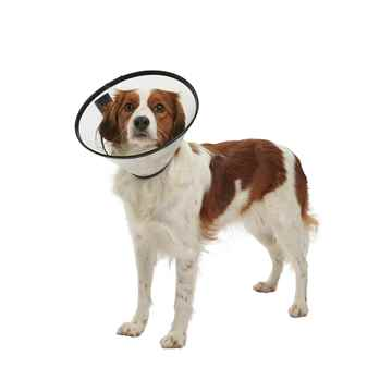 Picture of BUSTER QUICK COLLAR (273515) - 20cm