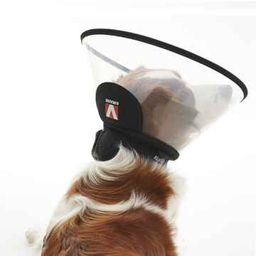 Picture of BUSTER COMPLETE COLLAR (273557) - 30cm