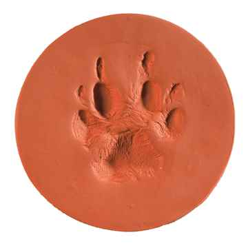 Picture of CLAYPAWS Pet Print Terra Cotta Clay Kit  (J1500TC)