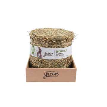 Picture of LIVING WORLD GREEN BOTANICALS MEADOW HAY BALE Natural - 500g