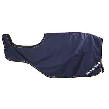 Picture of BACK ON TRACK SAMMY EXERCISE RUG BLUE 78in
