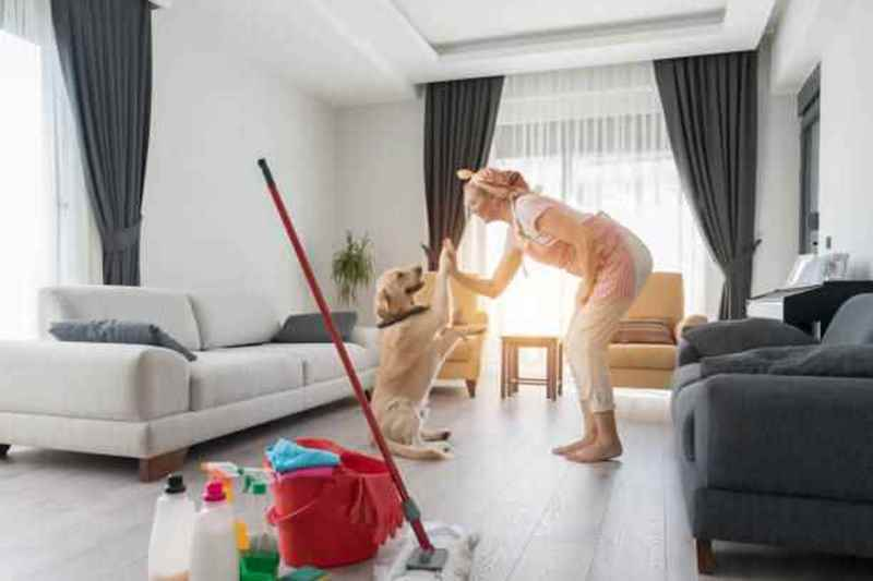Picture for category Cleaning Supplies & Odor Eliminators
